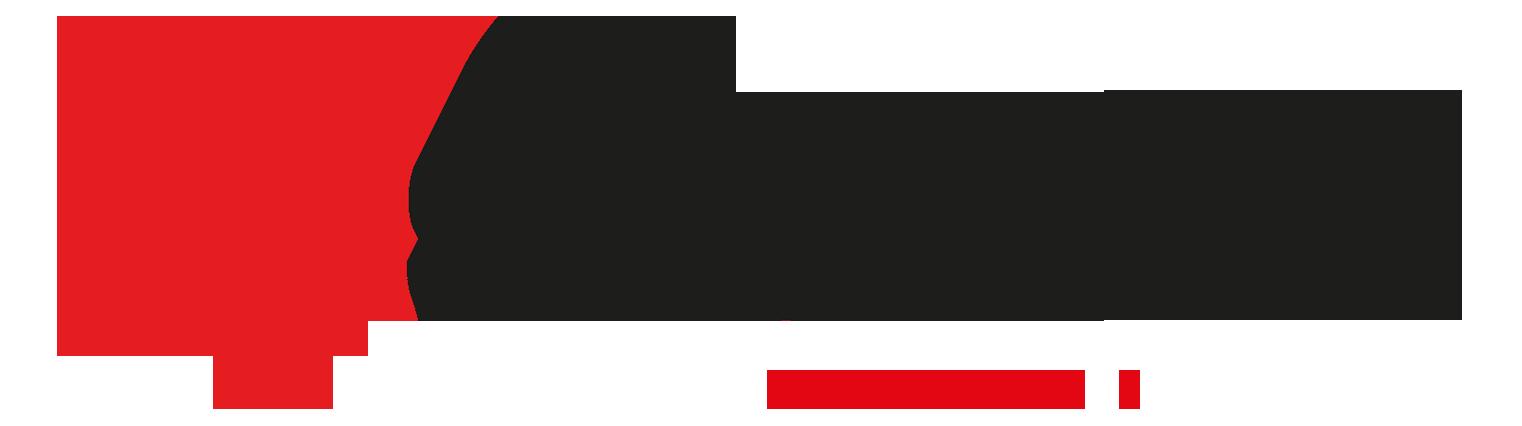 sdemir_logo-2